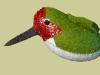 Anna\'s Hummingbird